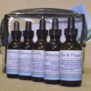 Natural Healing Room - Herbal Immune Boost Tincture Kit