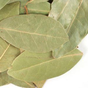 Natural Healing Room - Bay Leaves ( Laurus nobilis)