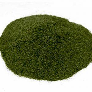 Natural Healing Room - Broccoli Powder (Brassica oleracea)