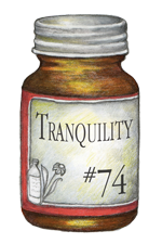 Natural Healing Room - Tranquility (500 Tablets)