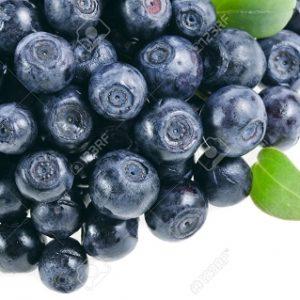 Natural Healing Room - Bilberry (Vaccinium myrtilli)