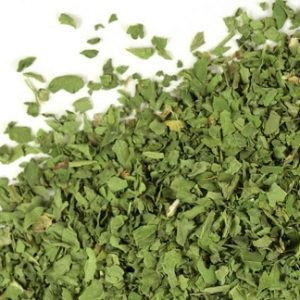 Natural Healing Room - Cilantro Leaf (Coriandrum Sativum)