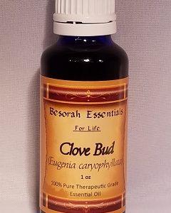 Natural Healing Room - Clove Bud Essential Oil (Syzygium aromaticum L.)