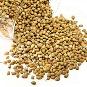 Natural Healing Room - Coriander Seed (Coriandrum sativum)