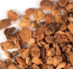 Natural Healing Room - Cramp Bark (Viburnum Opulus)