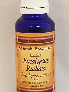 Natural Healing Room - Eucalyptus Radiata