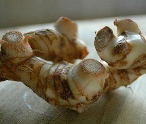 Natural Healing Room - Galangal Root (Alpina officinarum)