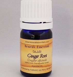 Natural Healing Room - Ginger Root Essential Oil - 5 ml
