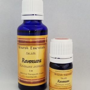 Natural Healing Room - Ravensara Essential Oil